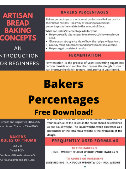 Bakers Percentages The Trick Professionals Use That You Need To Know About Better Baker Club